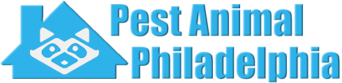 Philadelphia Wildlife and Animal Removal